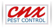 logo cnxpest